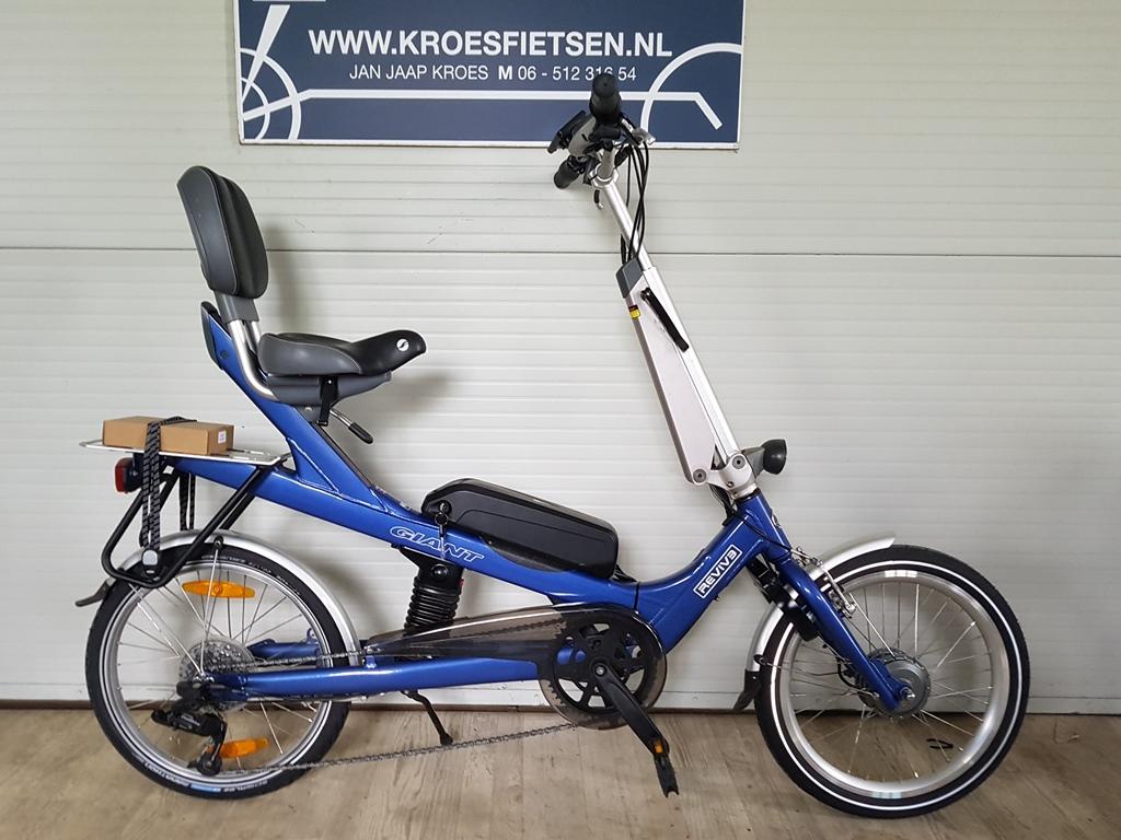 giant revive dua; drive t21 ebike €1495